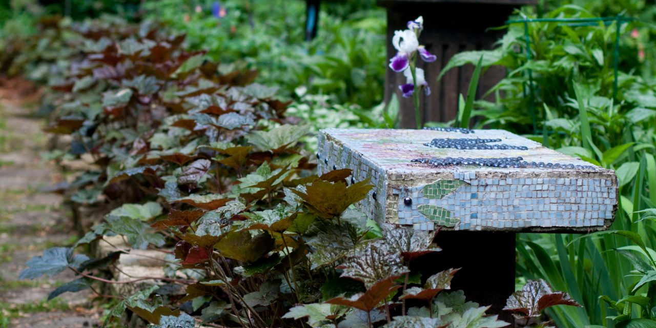 Summer Gardening Tips for Your Minneapolis Home